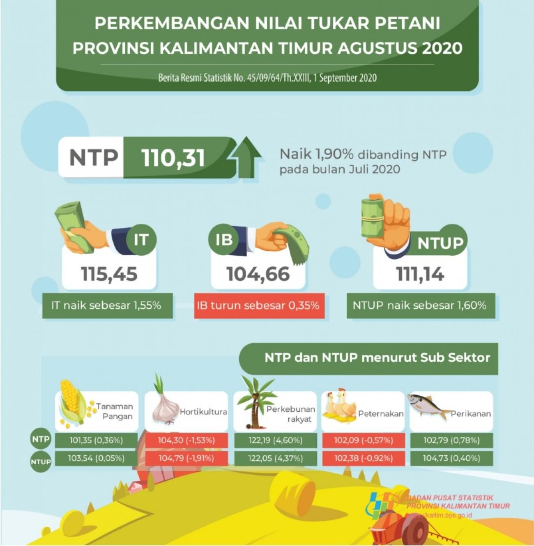 Penurunan NTPT (Peternakan) di Bulan Agustus