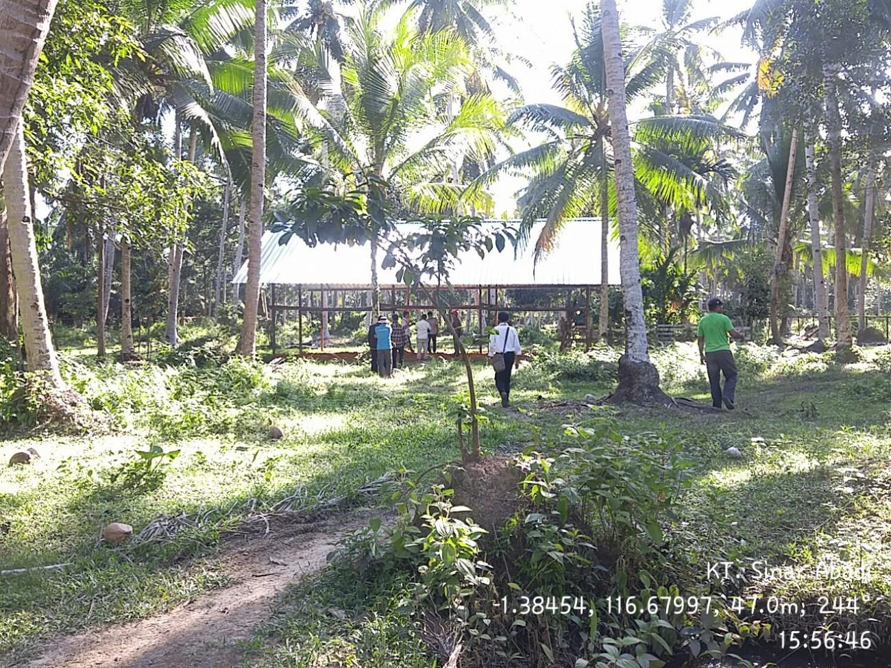 Dinas Peternakan Sudah Selesaikan Pembangunan Mini Ranch Di 5 Kabupaten Kota