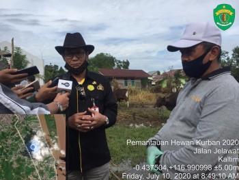 Dinas PKH Cek Kesehatan Hewan Kurban di Tenggarong