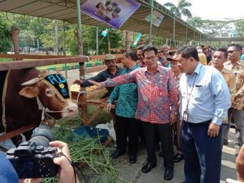 DPKH Kaltim Gelar Expo Bhakti Peternakan, Dadang Sudarya : Strategi Investasi Ternak Industri 4.0