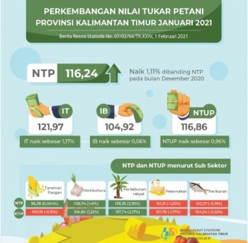 Januari 2021 NTP Peternakan Mengalami Penurunan