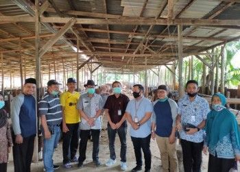 Tingkatkan Produksi Daging di Kaltim, Disnak Gandeng PT. Berkah Salama Jaya