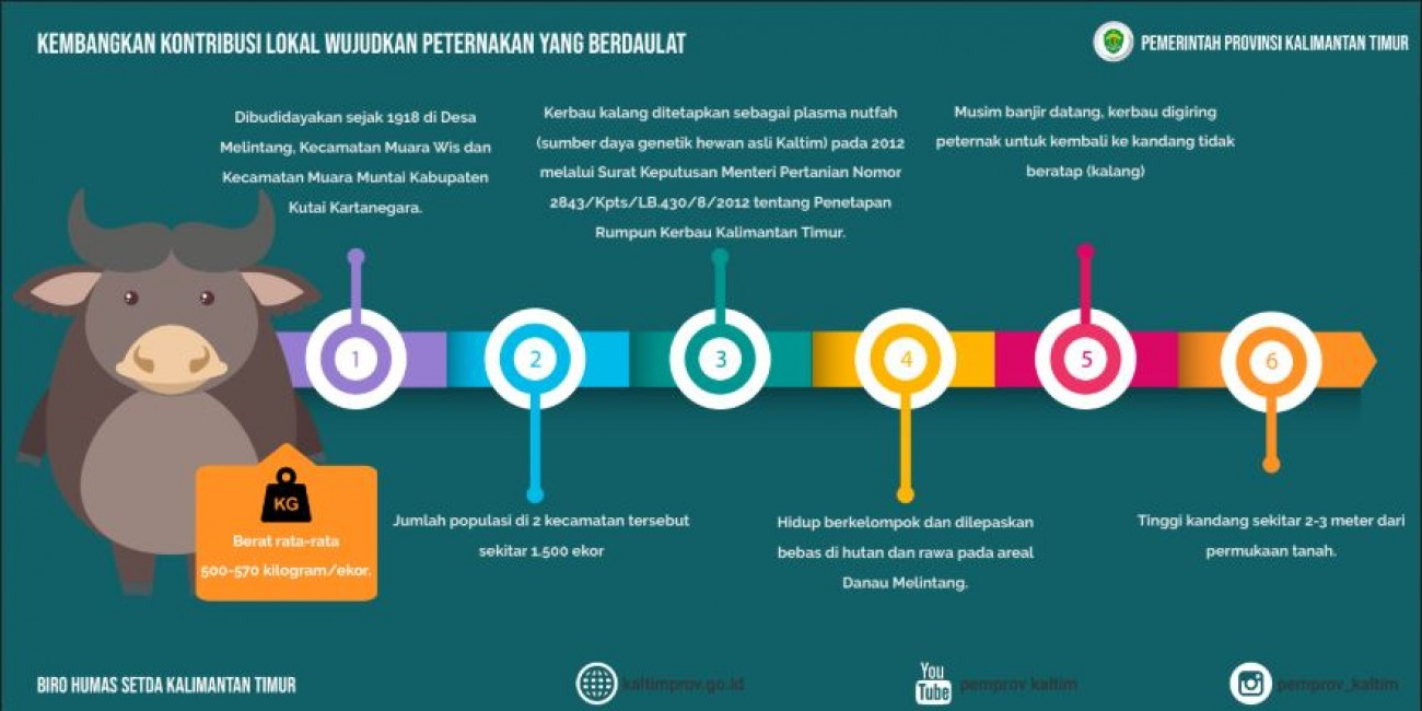 Dinas Peternakan & Kesehatan Hewan Provinsi Kalimantan ...