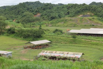 Cross Visit Pengembangan Kawasan & Pakan Ternak