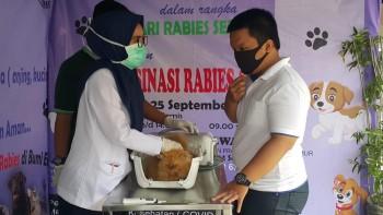 Vaksinasi Rabies Gratis